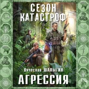 Вячеслав Шалыгин «Агрессия»
