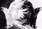 «Воронов дар. Свет и тьма» Руслан Муха